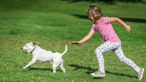 Kids and dogs–impact on children's health and social-emotional development